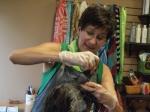 Hair coloring services at JT Techniques